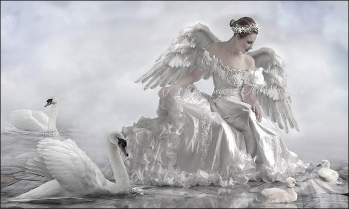 Swan Princessfun Guerilla