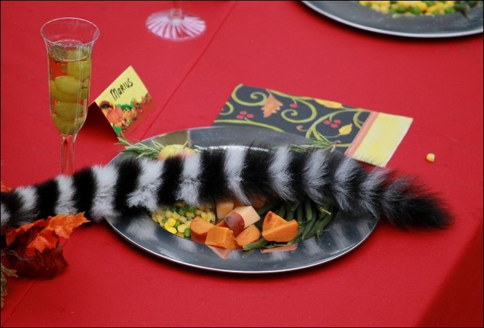 A feast for lemurs