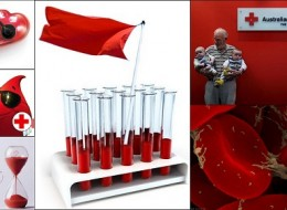 Blood Donation:History, Myths, Facts and Human Blood Donating Perpetuum Mobile