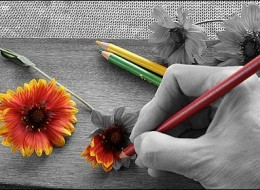 Selective Coloring: When Just a Little Bit of Color is Enough