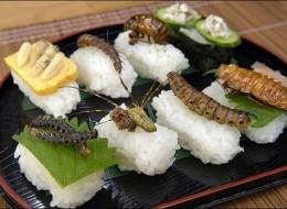 Insect Cuisine of Shoichi Uchiyama