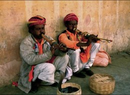 Snake Charming – Amazing Performance Spiced With Venom