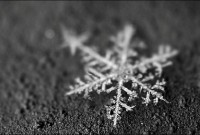 The true story behind the snowflake uniqueness