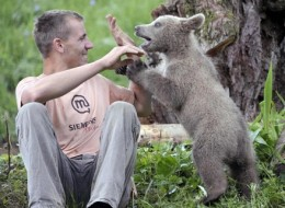 Bear as a pet?