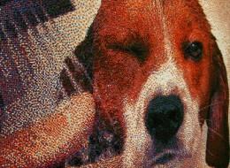 Pixelated beagle