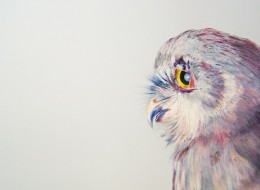 Photo-realistic Drawings of Beautiful Owls