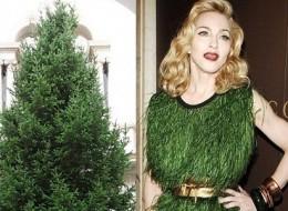 Celebrities dressed like Christmas threes