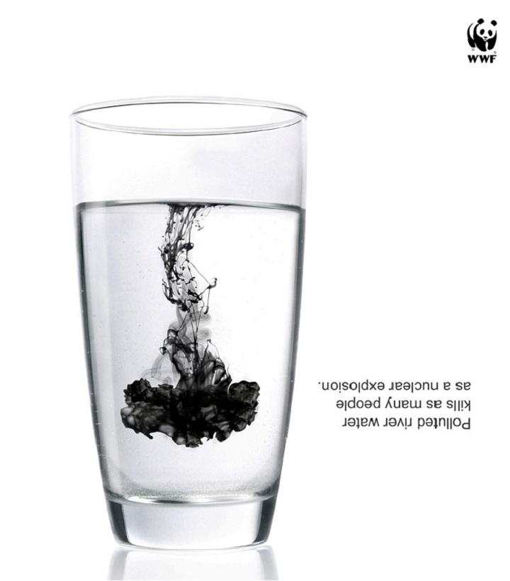 WWF: World Wide Fund for Nature